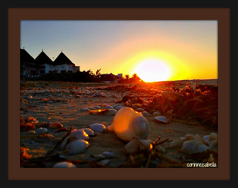 The Sunset from a Seashell's perspective